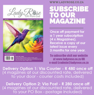 Lady Rose Magazine subscription options
